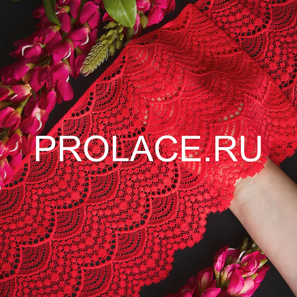 prolace 01112020 new lace24956